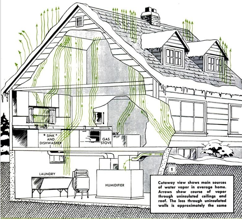 House Cutaway Showing Movement of Condensation 1951