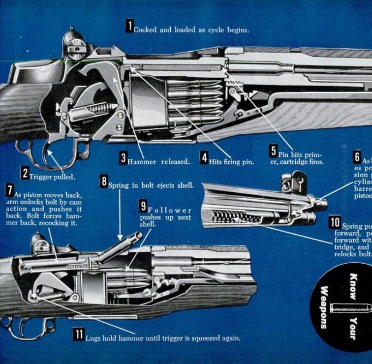 M1 Garand Rifle Cutaway 1951