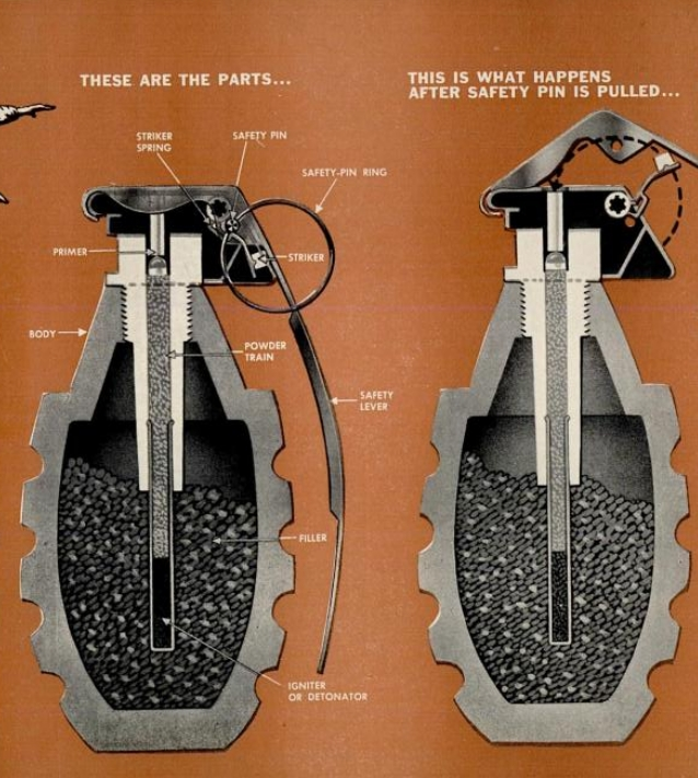 Hand Grenade Cutaway Drawing 1951