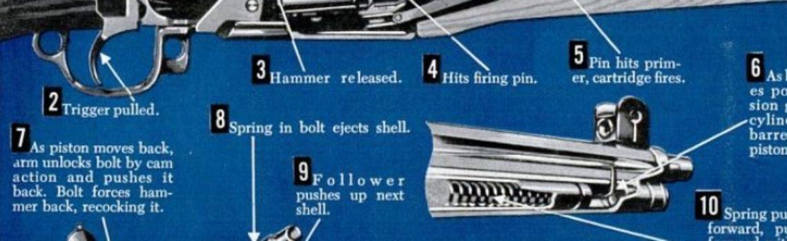 M1 Garand Rifle Cutaway, 1951