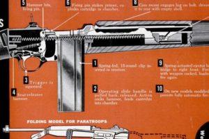 Winchester M1 .30 Carbine Cutaway, 1951