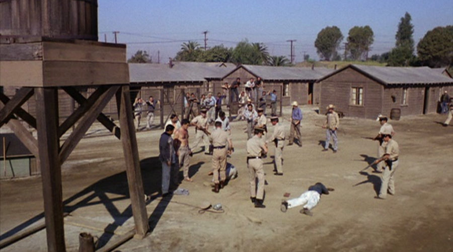 Dark Nazi POW Camp Past of Los Angeles Architectural Firm
